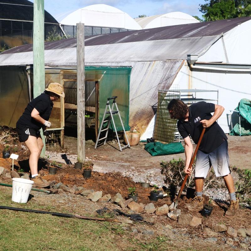 APS staff digging